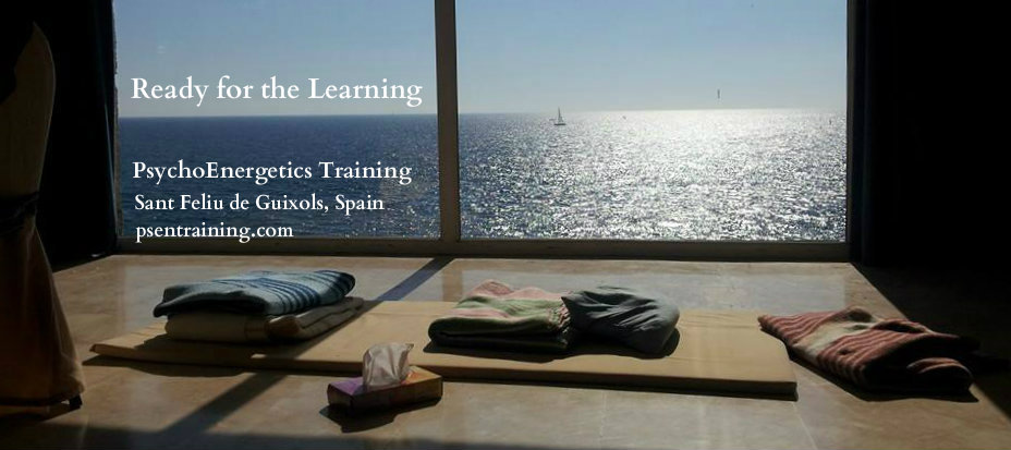 Ready for the Learning - Sea Thru Window
